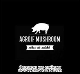 agroif 270-250