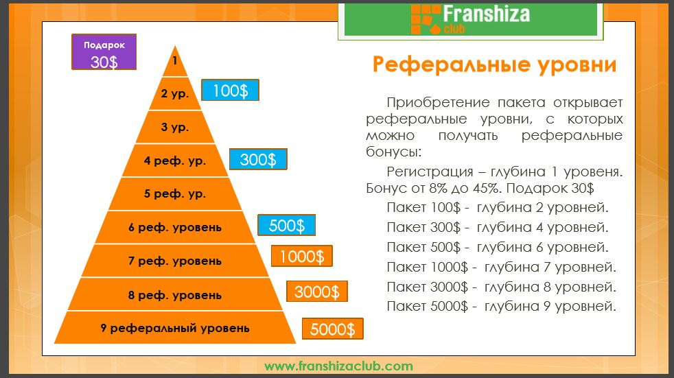 franshizaclub реферальные уровни